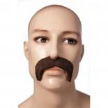 Grosses Moustaches Châtain