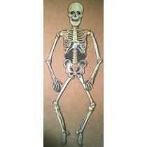 Panneau Squelette Halloween