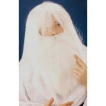 Perruque + Barbe Druide F
